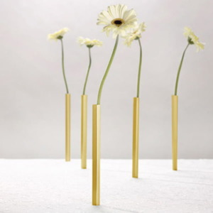 סט 5 אגרטלים מגנטיים Magnetic vase